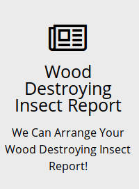 wood destroying insect report